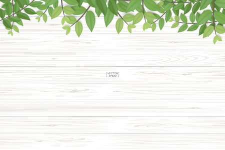 Illustration pour Wood texture background with green leaves. Realistic vector illustration. - image libre de droit