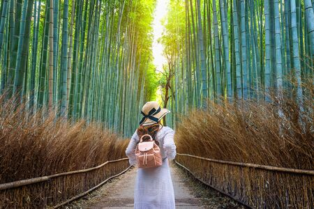 Photo pour Woman walking at Bamboo Forest in Kyoto, Japan. - image libre de droit
