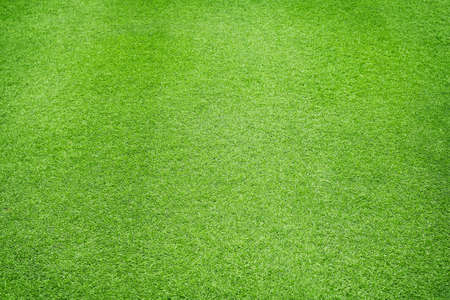 Foto de Natural Green grass texture background Close up Top view - Imagen libre de derechos