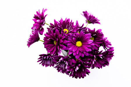 Photo for Artificial flower bouquet decoration, copy space background - Royalty Free Image