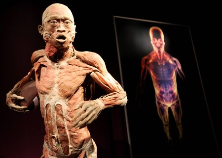 KRAKOW, POLAND - MARCH 11, 2013: The Human Body Exhibition  the exhibition of human bodies in old industrial halls Miraculum at the street  Zablocie. Cracow. Poland