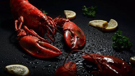 Foto de Red lobster with lemon and parsley studio shot high contrast dark mood. - Imagen libre de derechos