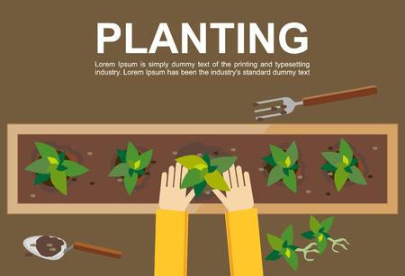 Planting illustration. Planting concept. Flat design illustration concepts for working farming harvesting gardening architectural seeding cultivate go green.のイラスト素材