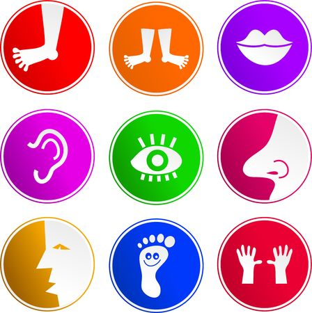 Photo pour collection of body part sign icons isolated on white - image libre de droit