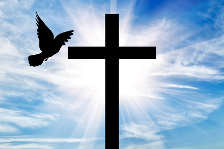 Concept of religion. Silhouette of a cross and dove in the rays of light on the background of the beautiful sky