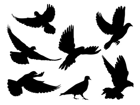Ilustración de Silhouettes of doves in many different flying positions and angles - Imagen libre de derechos