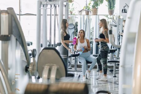 Photo pour attractive girls in sportswear at the gym communicate. sports life and fitness atmosphere. healthcare. - image libre de droit