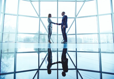 Young business partners handshaking after making agreement