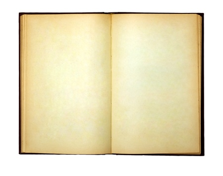 The old open book and empty pages