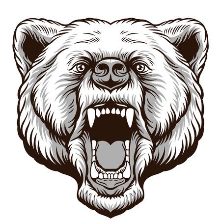 Illustration pour Angry Bear Head. Vector illustration - image libre de droit