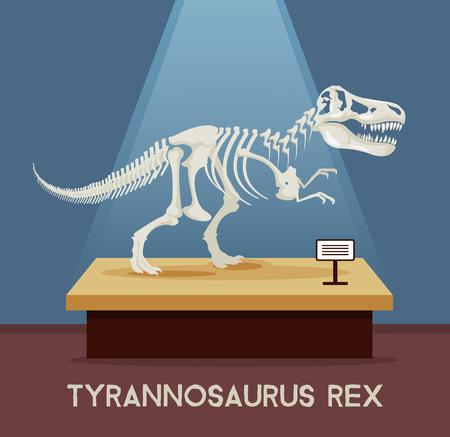 Illustration pour Tyrannosaur Rex bones skeleton in museum exhibition. Vector flat cartoon illustration - image libre de droit