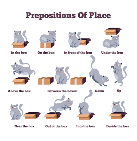 Cute cat character in different poses with box. Prepositions of place English. Studying of foreign language concept. Vector flat cartoon character isolated illustration