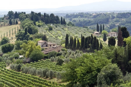 panoramic scenery located in the Chianti region of Tuscany, a area in Italy (Southern Europe)