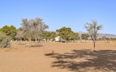 rural settlement seen in Namibia, Africa