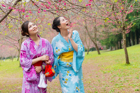 sweet smiling girls looking at cherry blossom flower trees feeling surprised and wearing traditional kimono clothing in japan travel vacation holidays.