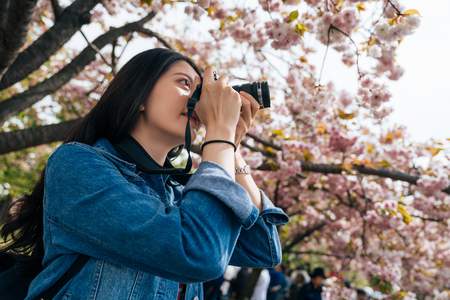 Foto de young girl standing under sakura tree in the park in spring. beautiful woman professional photographer love hobby taking photo of the pink cherry blossom. elegant lady holding dslr camera. - Imagen libre de derechos