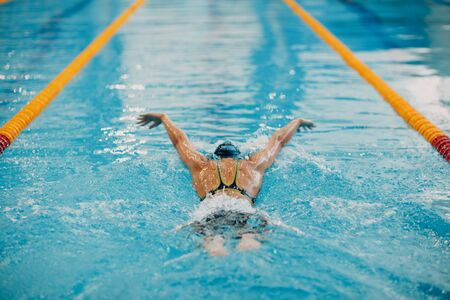 Photo pour Young woman swimmer swims in swimming pool. Back view. - image libre de droit