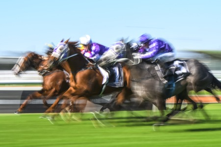 Motion blurred horse racing action image