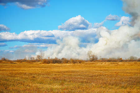 Photo pour Smoke from a forest fire rises into the sky on sunny autumn day - image libre de droit