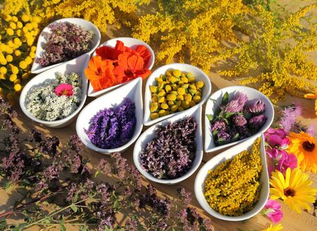Photo pour Herbs and flowers used in  natural alternative remedies in ceramic bowls on a wooden background. Top view. Flat lay. - image libre de droit