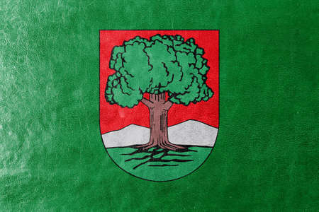 Flag of Walbrzych, Poland, painted on leather texture