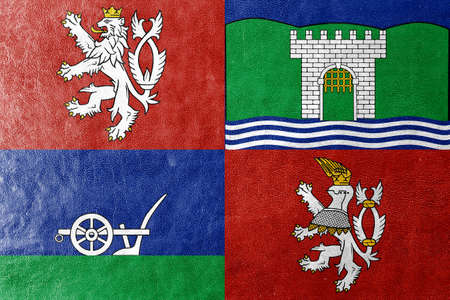 Flag of Usti nad Labem Region, Czechia, painted on leather texture