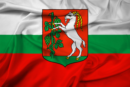 Waving Flag of Lublin, Poland