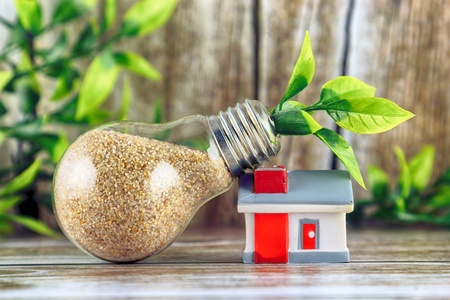 Photo pour Plant growing inside the light bulb and miniature house. Green eco renewable energy concept. Electricity prices, energy saving in the household. - image libre de droit