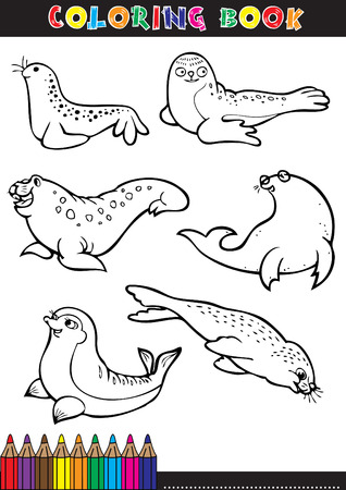Coloring page or color comics black and white seals.