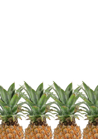 4 Pineapples with green leaves on white background