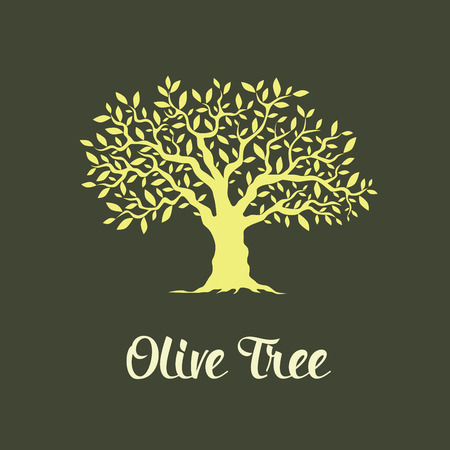 Illustration pour Beautiful magnificent olive tree isolated on green background. Premium quality logo concept vector illustration. - image libre de droit