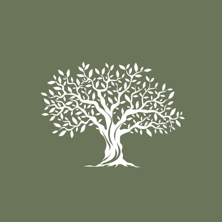 Illustration pour Beautiful magnificent olive tree silhouette on grey background. Infographic modern vector sign. Premium quality illustration  design concept. - image libre de droit