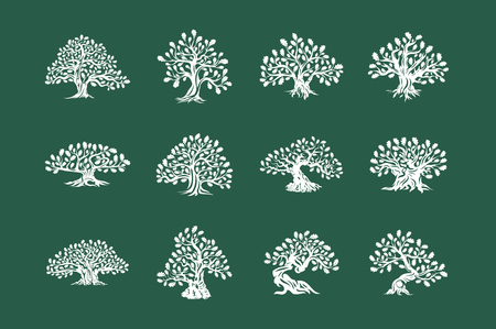 Illustration pour Huge and sacred oak tree plant silhouette icon isolated on green background set. - image libre de droit