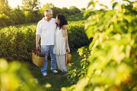 Foto de Beautiful adult couple spend time in a summer field - Imagen libre de derechos