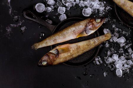 Photo pour Fresh whole fish with ice on black table. Top view. - image libre de droit