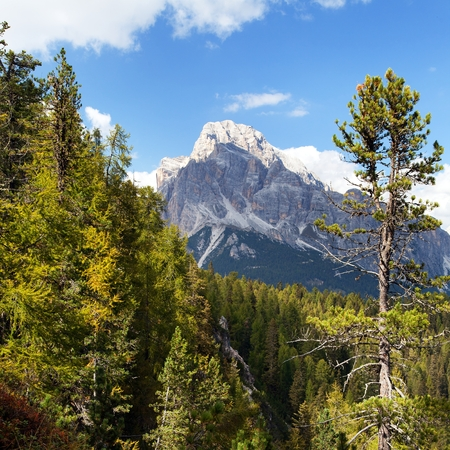 View of Cristallo gruppe, near Cortina d Ampezzo, Alps Dolomites mountains, Italy