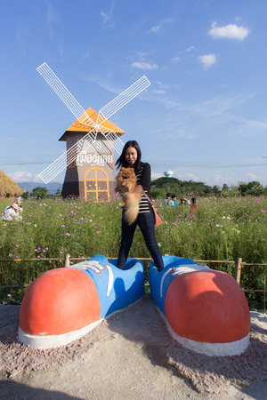 Thai woman and pomeranian with big shoes in cosmos field, Muangkaen Chiangmai Thailand