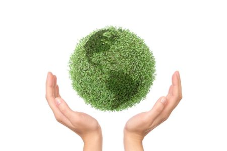 Green plant globe between two hands on white background - environmental protection concept