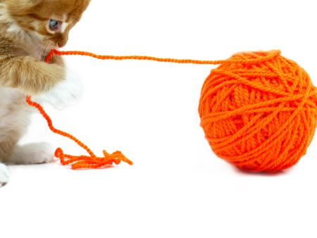 Kitten playing with orange ball of wool shot over white background