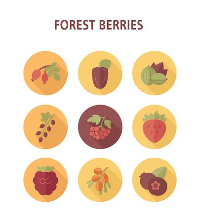 Illustration pour Forest berries icons set. Vector illustration for food apps and websites - image libre de droit