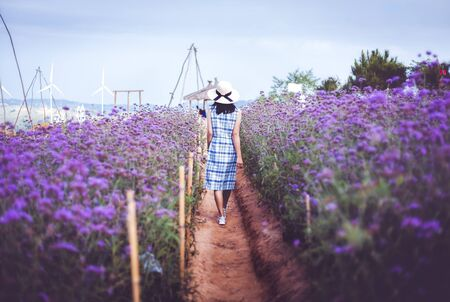 Photo pour Young asian travel woman with dress and hat walking in purple flower (Murdannia giganteum or Thai lavender) field at Phetchabun, Thailand - image libre de droit