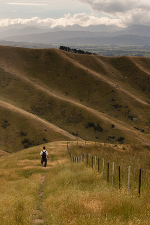 walker on Wither Hills