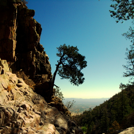 Rocky Cliff Gap  Carr Canyon part of the Coronado National Forest located in Sierra Vista,   Arizona