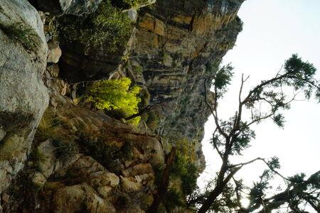 61 CarrBigFalls4 Carr Canyon Coronado National Park, Arizona, USA