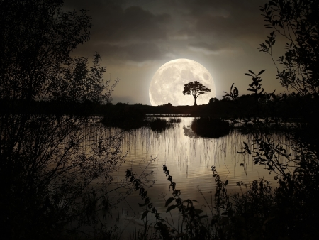 Big Moon over the wild lake