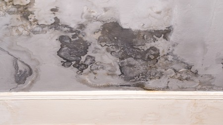 Wall paint that peels off and fades off due to moisture problems in wallcovering, dark spots needs repaired and repainted. Ruined by mold fungus and mildew plastering plaster ceiling