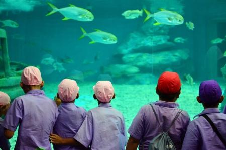 kids in aquarium