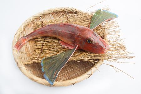 Photo pour Fresh Japanese Fish on white background - image libre de droit