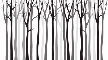 Foto de Birch tree wood silhouette on white background - Imagen libre de derechos
