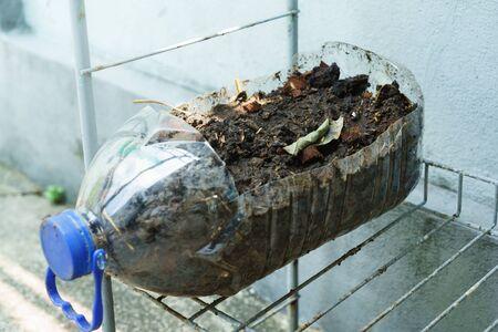 Photo pour Plastic water bottle that is cut and used as plant pot - image libre de droit